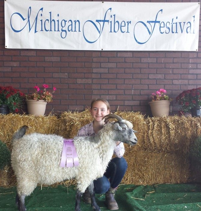 J's Bonnie Lass, Senior Reserve Champion at the Michigan Fiber Festival 2014 Pygora Show.
